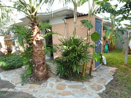 Click to enlarge image Lush tropical back yard - La Tortuga, lovely new remodel, Spanish Village #12 - Charming coastal cottage, private fenced yard, dog ok